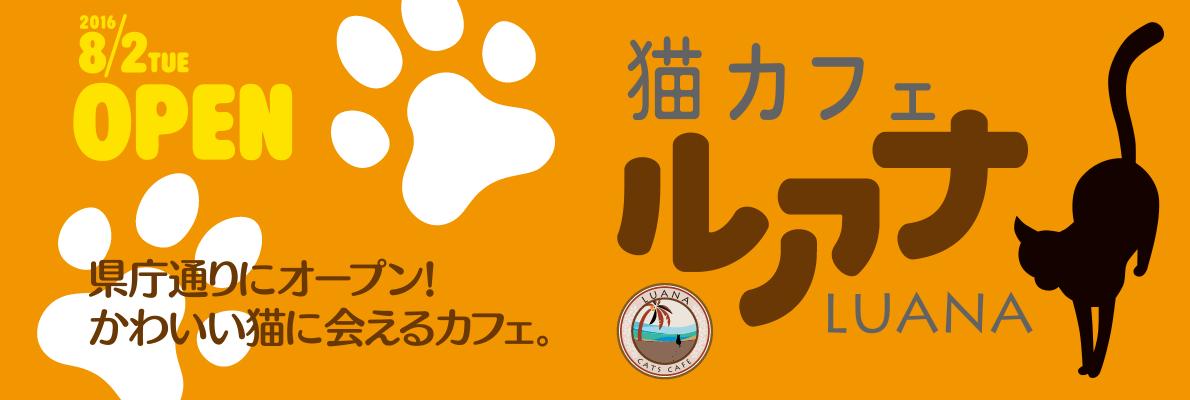 猫カフェ ルアナ 岡山県内最大級の猫カフェ